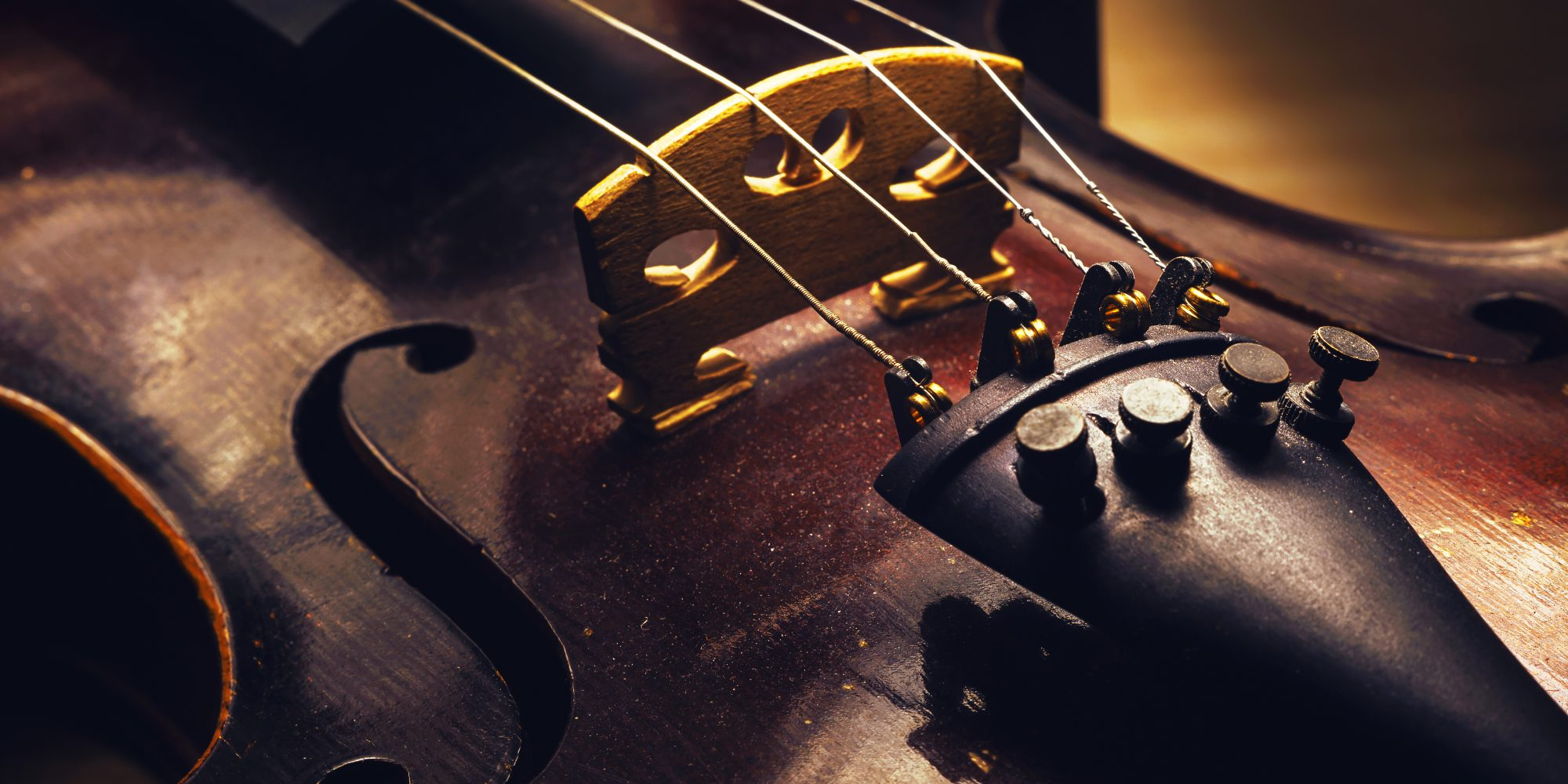 Closeup detail of old wooden violin with four strings